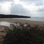 Praia de Amoreira