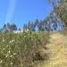 Monte do Casarao